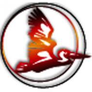 Логотип компании ЧП «Пеликан»